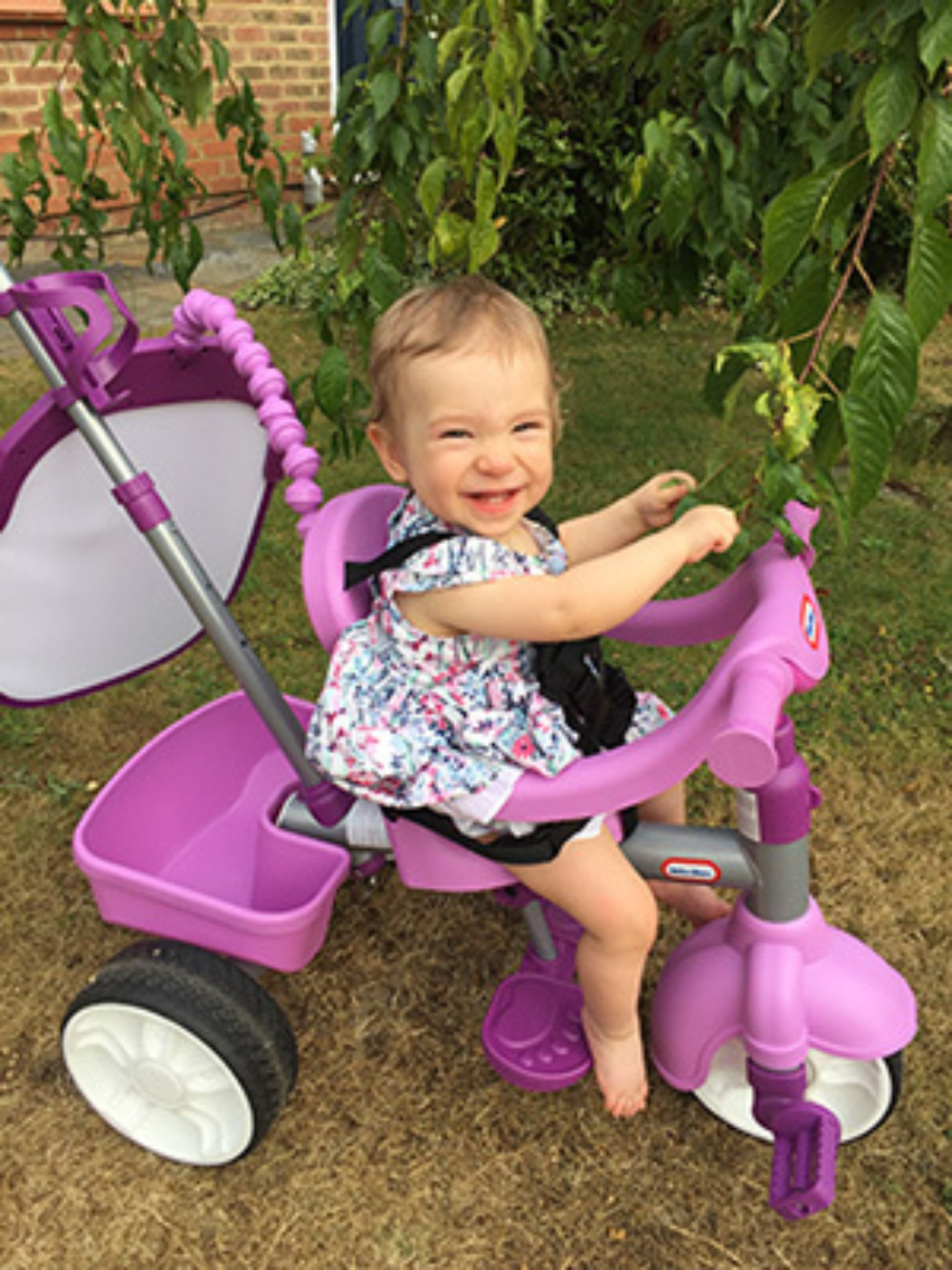 You toddler Violet, in her garden on her purple tricycle, smiling at the camera